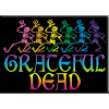 Grateful Dead - Skeletons and Rainbow Magnet