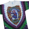 Grateful Dead - Seasons of the Dead Tie Dye T Shirt